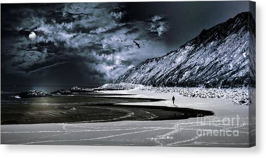 Antarctica Canvas Print - Deep Into That Darkness  by Stelios Kleanthous