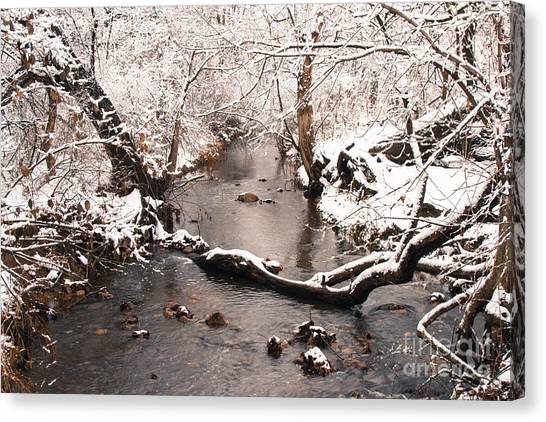 Deep Run In Winter Canvas Print