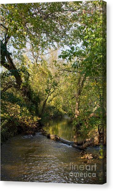 Deep Run Maryland Canvas Print by Chris Scroggins