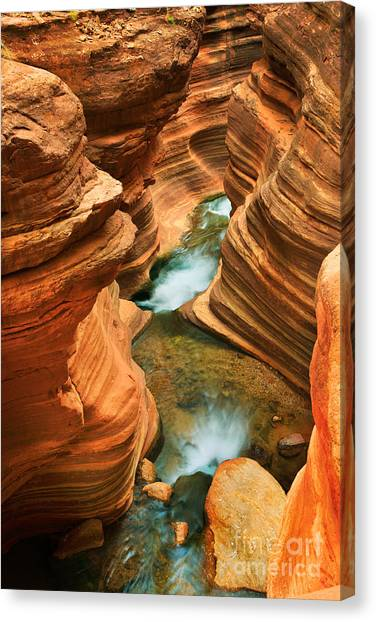 Grand Canyon Canvas Print - Deer Creek Slot by Inge Johnsson