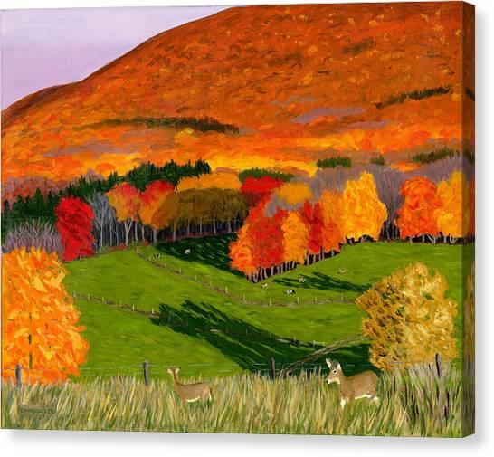 Deer's Eye View Of Bear Meadows Farm Canvas Print