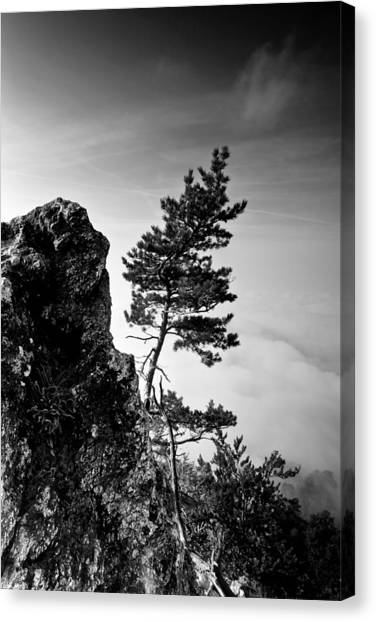 Grey Clouds Canvas Print - Defiant by Davorin Mance