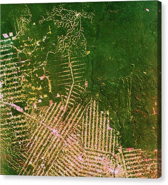 Deforestation Canvas Print - Deforestation In Brazil by Nrsc Ltd/science Photo Library