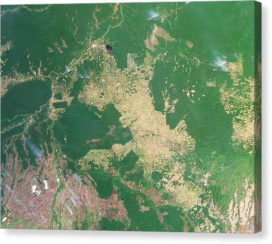 Deforestation Canvas Print - Deforestation In The Amazon by Nasa Earth Observatoryscience Photo Library