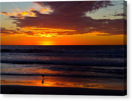 Del Mar Sunset Canvas Print