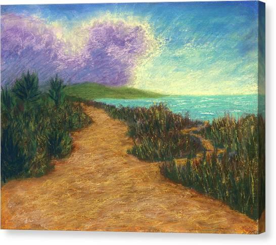 Del Mar Trails 02 Canvas Print