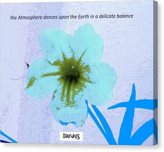 Delicate Balance Canvas Print