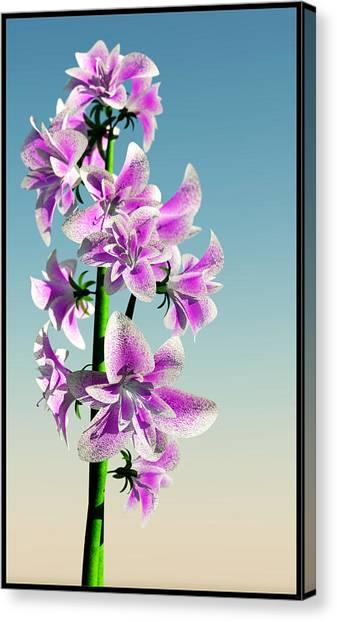 Delicate Flower... Canvas Print