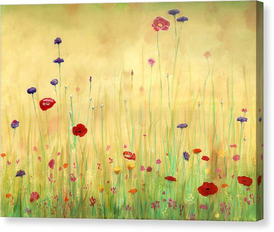 Delicate Poppies Canvas Print by Cecilia Brendel