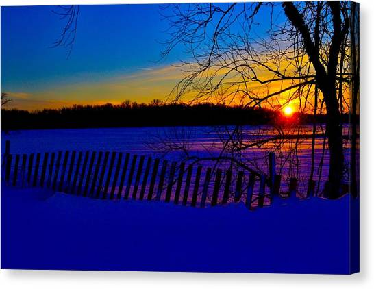 Delight Behind The Fence Canvas Print