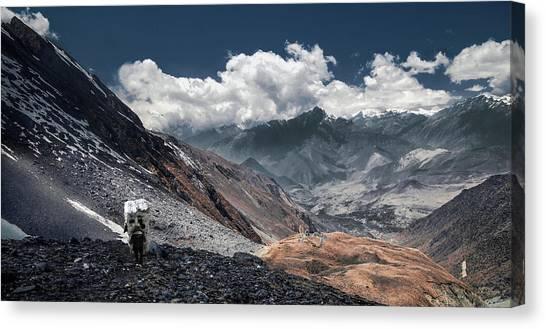Himalayas Canvas Print - Delivery Of Refrigerator, Himalayas by Dmitriy Yevtushyk