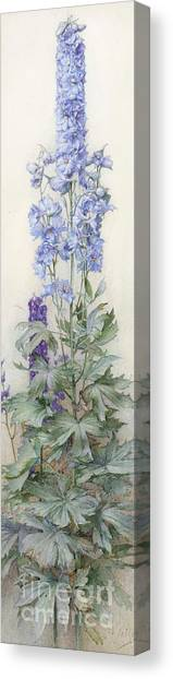 In Bloom Canvas Print - Delphiniums by James Valentine Jelley