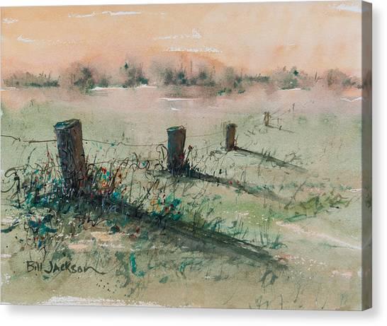 Delta 14 Canvas Print
