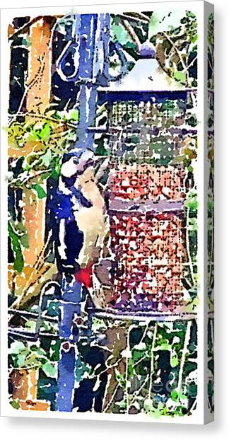 Dendrocopos Major 'great Spotted Woodpecker' Canvas Print