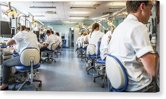 Classroom Canvas Print - Dentistry Training by Gustoimages