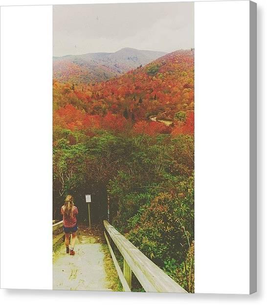 Appalachian Mountains Canvas Print - Descend by Simon Nauert