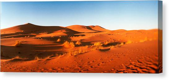 Sahara Desert Canvas Print - Desert At Sunrise, Sahara Desert by Panoramic Images