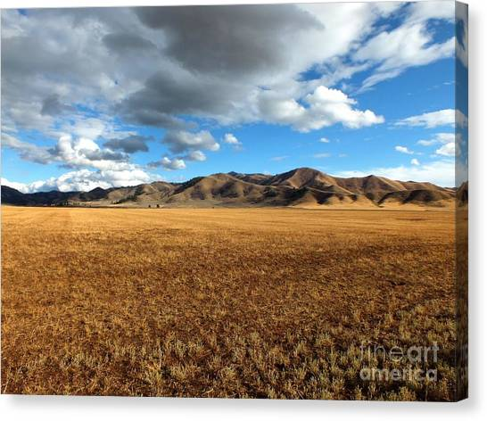 Desert Bliss Canvas Print by Kimberly Maiden