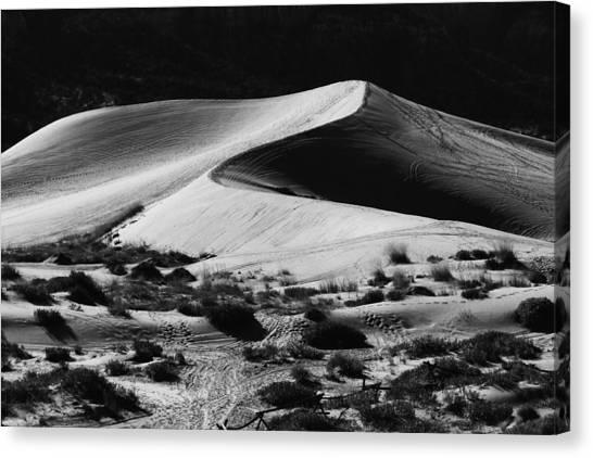Sandy Desert Canvas Print - Desert Dune by Mountain Dreams