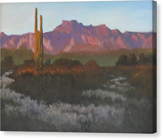 Desert Sunset Glow Canvas Print