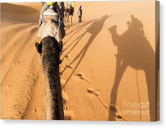 Sahara Desert Canvas Print - Desert Excursion by Yuri Santin