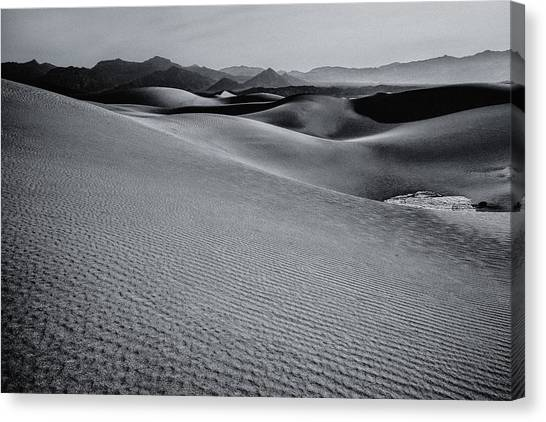 Desert Forms Canvas Print
