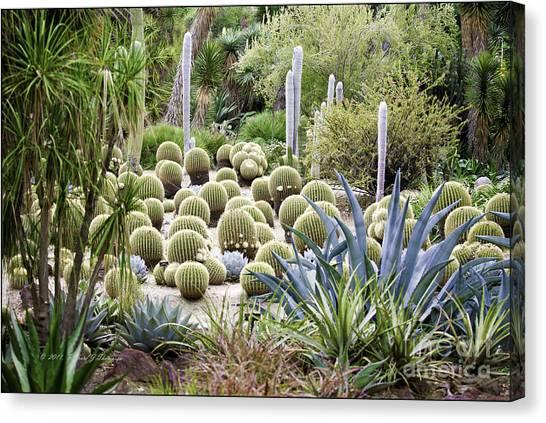 Desert Garden Canvas Print