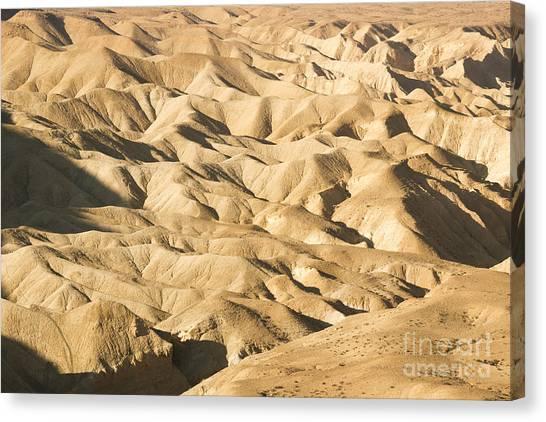 Negev Desert Canvas Print - Desert Landscape by Eyal Bartov