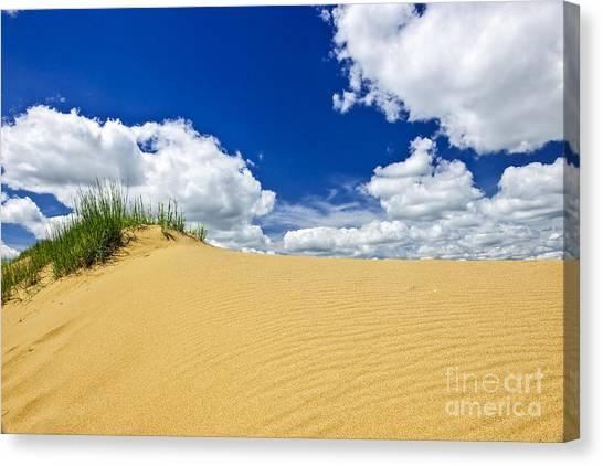 Sands Canvas Print - Desert Landscape In Manitoba by Elena Elisseeva