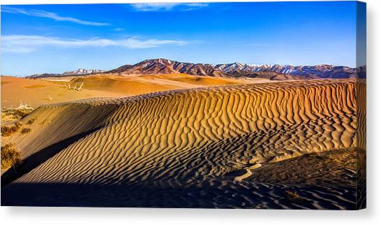 Desert Sunsets Canvas Print - Desert Lines by Chad Dutson