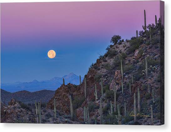 Desert Moonset Canvas Print