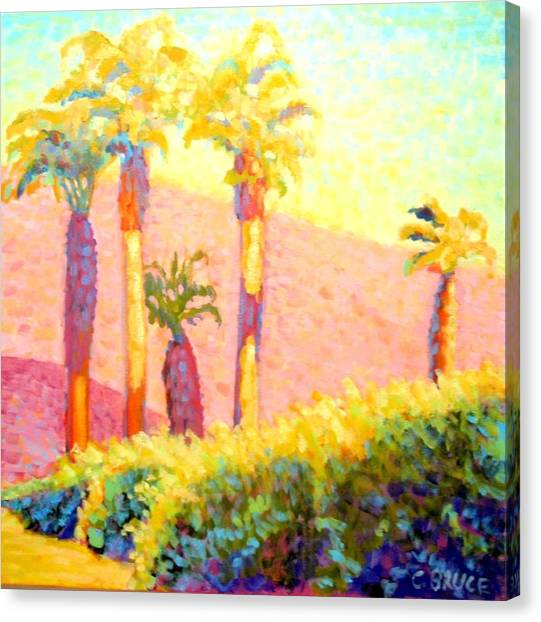 Desert Morning Palms Canvas Print by Craig  Bruce