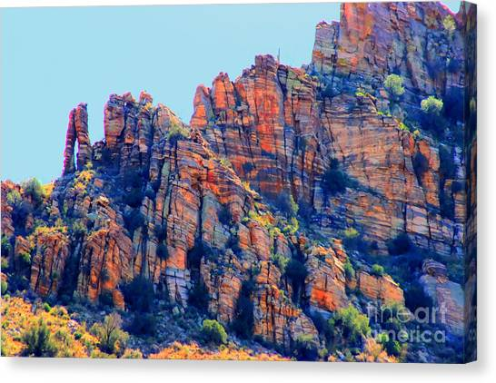 Desert Paint Canvas Print