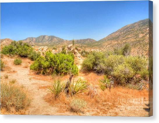 Desert Panorama Canvas Print by Deborah Smolinske
