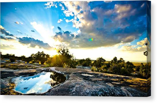 Desert Puddle Reflection Canvas Print by Chase Taylor