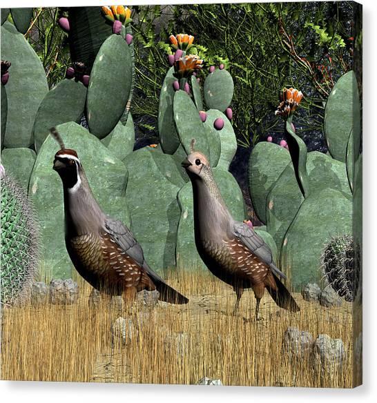 Desert Quail Canvas Print