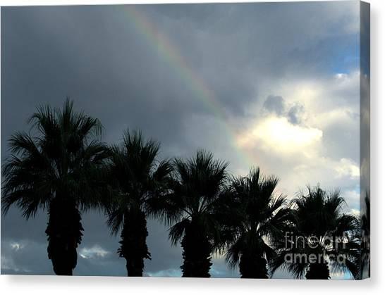 Desert Rainbow Canvas Print by Deborah Smolinske