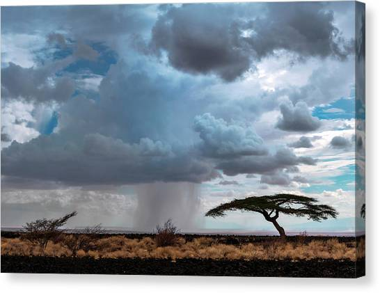 Rainclouds Canvas Print - Desert Rainclouds by Babak Tafreshi