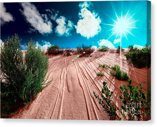Canvas Print featuring the photograph Desert Rays by Julian Cook