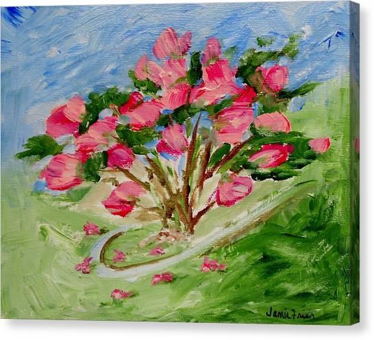 Desert Rose Abstract Canvas Print