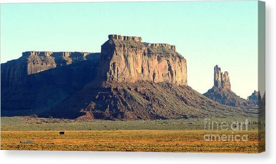 Desert Scene Usa Canvas Print by John Potts