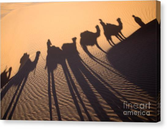 Sahara Desert Canvas Print - Desert Shadows by Delphimages Photo Creations