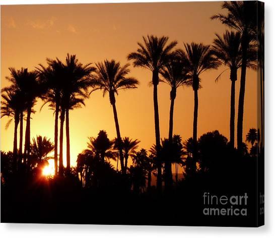 Desert Silhouette Sunrise Canvas Print by Deborah Smolinske