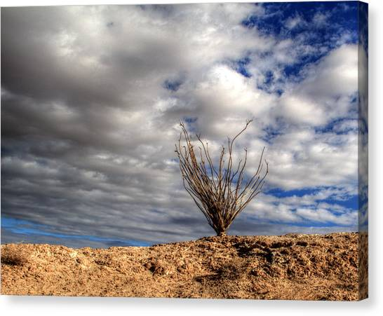 Canvas Print featuring the photograph Desert Skys Number One by Jeremy McKay