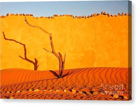 Namibia Desert Still Life Canvas Print
