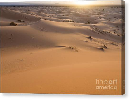 Desert Sunrises Canvas Print - Desert Sunrise by Yuri Santin