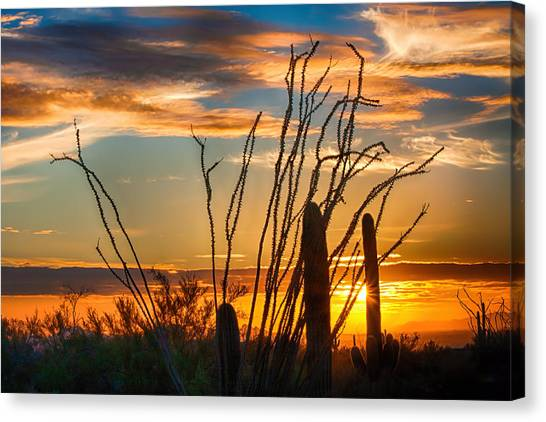 Desert Sunset Canvas Print