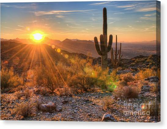 Desert Sunset II Canvas Print