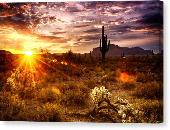 Desert Sunshine  Canvas Print