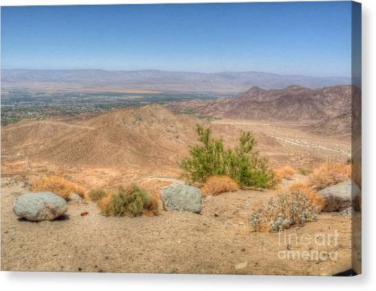 Desert View Canvas Print by Deborah Smolinske